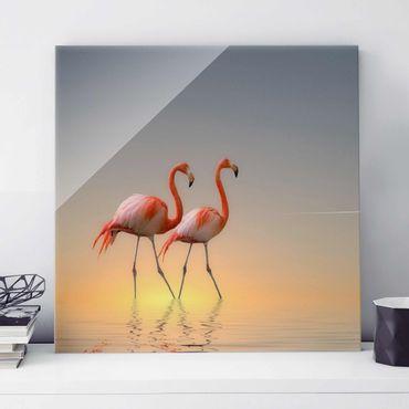 Quadro in vetro - Flamingo Love - Quadrato 1:1