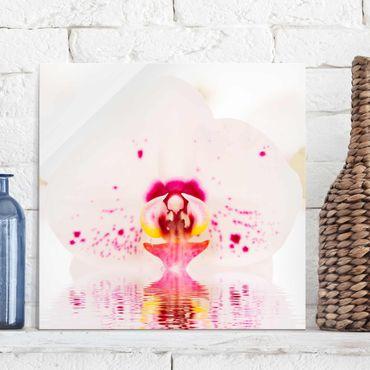 Quadro in vetro - Spotted Orchid on water - Quadrato 1:1