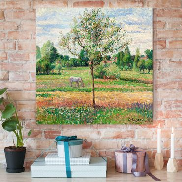 Quadro in vetro - Camille Pissarro - Prato con Cavallo grigio, Eragny - Impressionismo - Quadrato 1:1