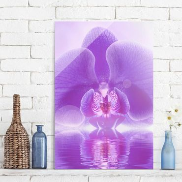 Quadro in vetro - Purple Orchid on water - Verticale 2:3