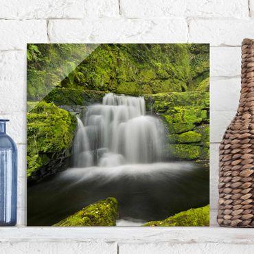 Quadro in vetro - Lower Mclean Falls In New Zealand - Quadrato 1:1