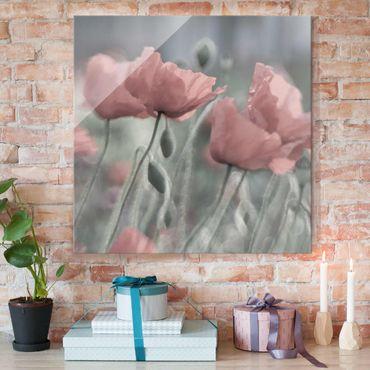 Quadro in vetro - Painterly Poppies - Quadrato 1:1
