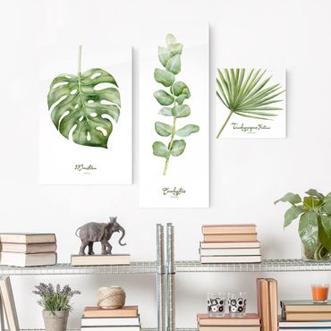 Quadro in vetro - Watercolor Botany - 3 parti set