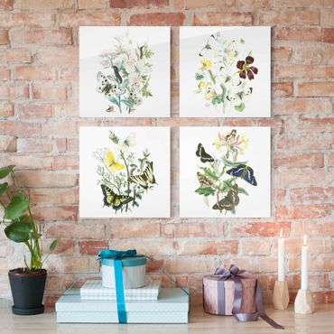 Quadro in vetro - Britannico Butterflies Set II - 4 parti set
