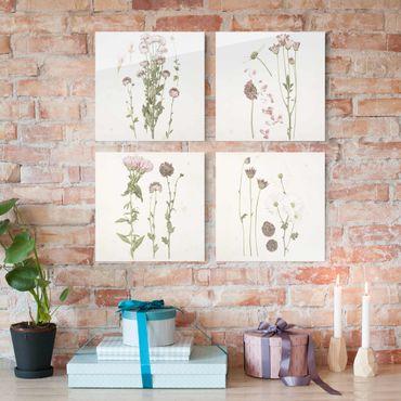Quadro in vetro - Herbarium In Pink Set I - 4 parti set