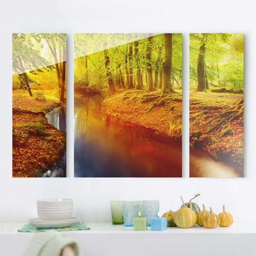 Quadro in vetro - Forest in Fall - 3 parti