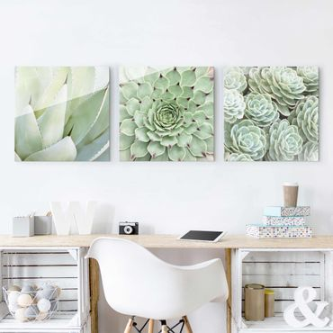 Quadro in vetro - Agave and Succulent Trio - 4 parti set