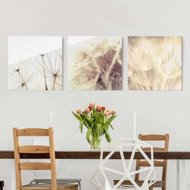 Quadro in vetro - Dandelions and grasses - 3 parti