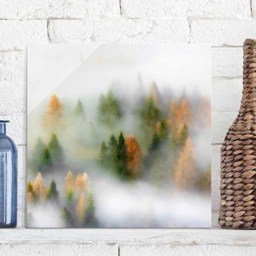 Quadro in vetro - Nube di foresta in autunno - Quadrato 1:1