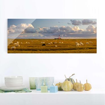 Quadro in vetro - North Sea Lighthouse with sheep flock - Panoramico