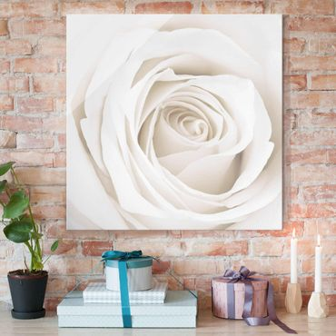 Quadro in vetro - Pretty White Rose - Quadrato 1:1