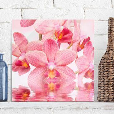 Quadro in vetro - Pink Orchid on water - Quadrato 1:1