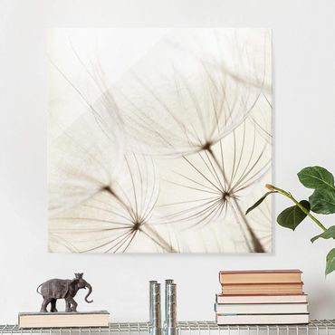 Quadro in vetro - Gentle Grasses - Quadrato 1:1