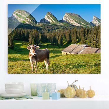 Quadro in vetro - Swiss Alpine meadow with cow - Orizzontale 4:3