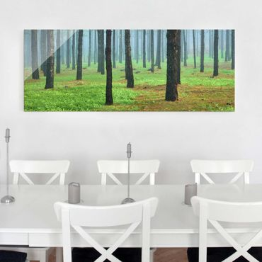 Quadro in vetro - Deep forest with pines on La Palma - Panoramico