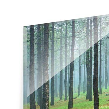 Quadro in vetro - Deep forest with pines on La Palma - Quadrato 1:1