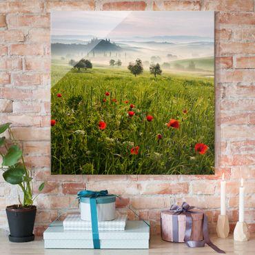 Quadro in vetro - Primavera Toscana - Quadrato 1:1
