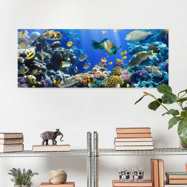 Quadro in vetro - Underwater Reef - Panoramico