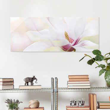 Quadro in vetro - Delicate Magnolia Blossom - Panoramico