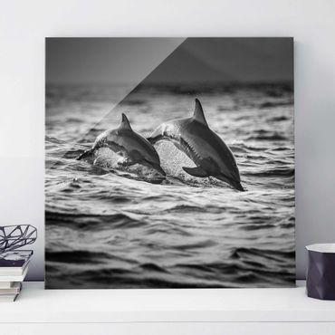 Quadro in vetro - Due delfini che saltano - Quadrato 1:1