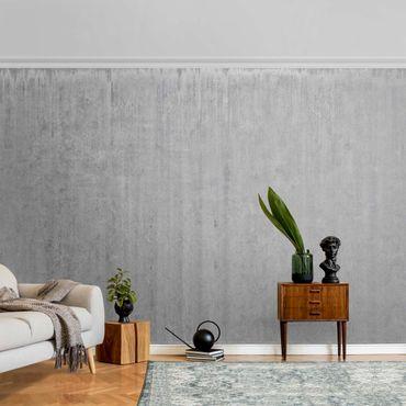 Carta da parati metallizzata - Grande loft con carta da parati muro di cemento