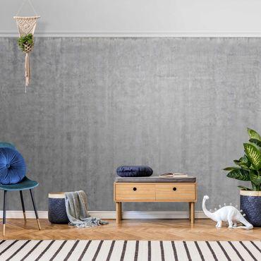 Carta da parati metallizzata - Grande parete con effetto cemento