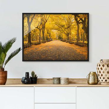 Poster con cornice - Autunno a Central Park