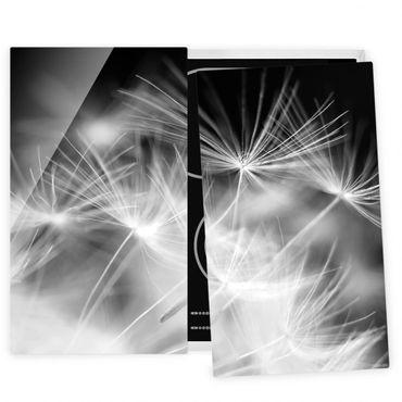 Coprifornelli in vetro - Moving Dandelions Close Up On Black Background