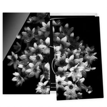 Coprifornelli in vetro - Scuro Clematis Strauss