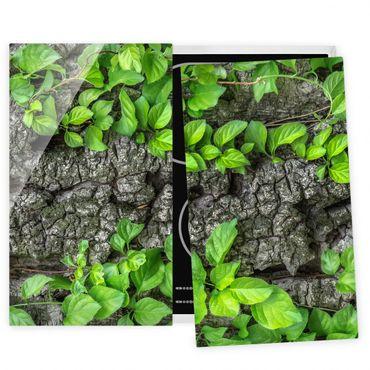Coprifornelli in vetro - Ivy Tree Bark