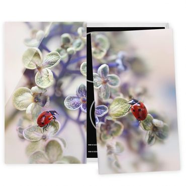 Coprifornelli in vetro - Ladybug In The Garden - 52x60cm