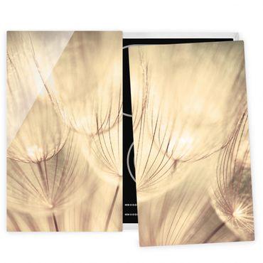 Coprifornelli in vetro - Dandelions Close-Up In Sepia Tones Homely