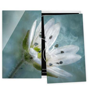Coprifornelli in vetro - Bianco fiore su Blu - 52x60cm