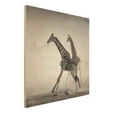 Quadro in legno - Giraffe hunting - Quadrato 1:1
