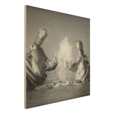 Quadro in legno - Hippo Fight - Quadrato 1:1