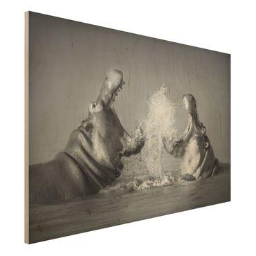 Quadro in legno - Hippo Fight - Orizzontale 3:2