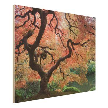 Quadro in legno - Japanese garden - Orizzontale 4:3