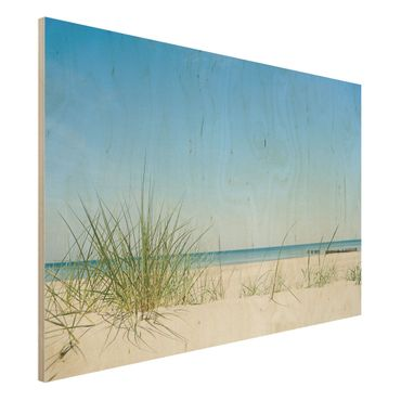 Quadro in legno - Baltic Coast - Orizzontale 3:2