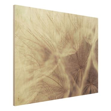 Quadro in legno - Detailed dandelions macro shot with vintage blur effect - Orizzontale 4:3