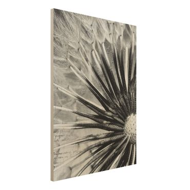 Quadro in legno - Dandelion Black & White Room - Verticale 3:4