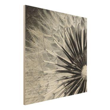 Quadro in legno - Dandelion Black & White - Quadrato 1:1