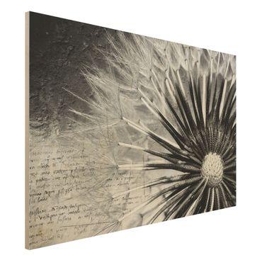 Quadro in legno - Dandelion Black & White - Orizzontale 3:2