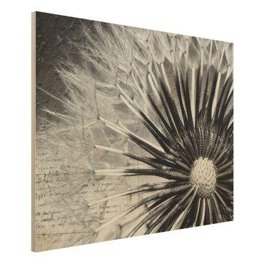 Quadro in legno - Dandelion The Black & White - Orizzontale 4:3