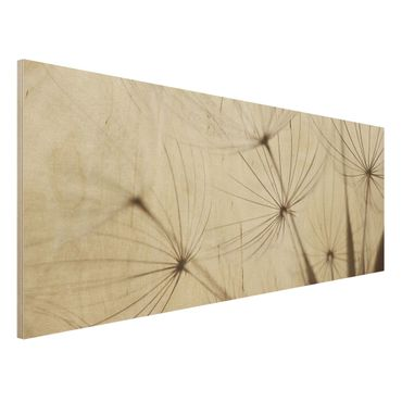Quadro in legno - Gentle grasses - Panoramico