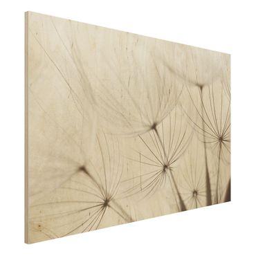 Quadro in legno - Gentle grasses - Orizzontale 3:2