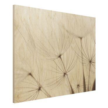 Quadro in legno - Gentle grasses - Orizzontale 4:3