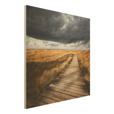 Quadro in legno - Pathway Through The Dunes - Quadrato 1:1
