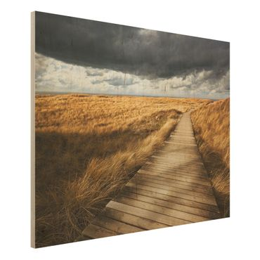 Quadro in legno - Pathway Through The Dunes - Orizzontale 4:3