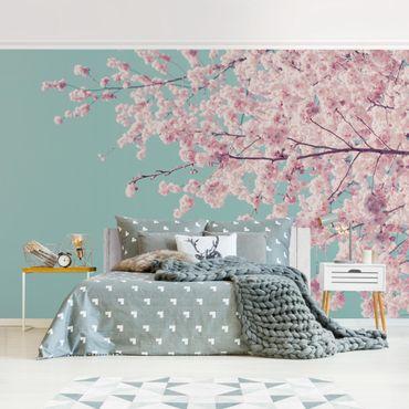 Carta da parati - Fiore di ciliegio giapponese