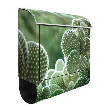 Cassetta postale - Cactus